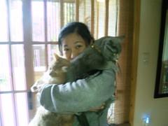 はじめまして、楽住な猫の暮らしブログです。